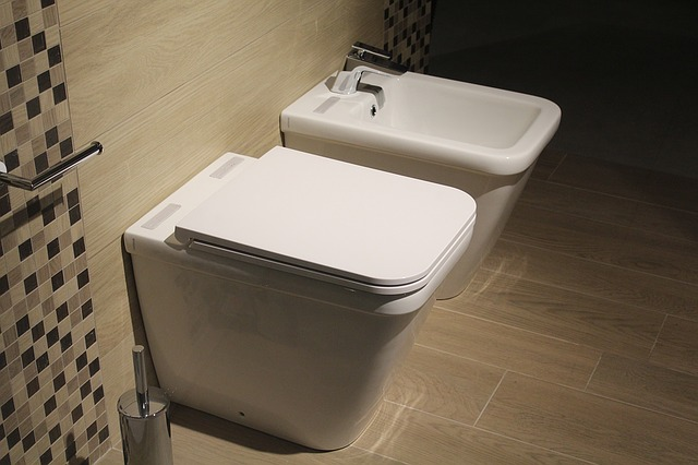 What to Do if Your Toilet Causes Water Damage